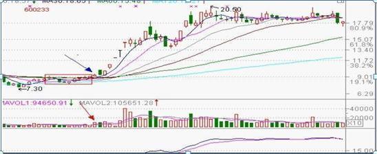 如何通过均线看股票涨跌